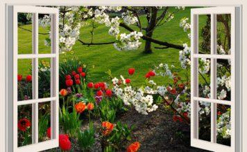 5 astuces pour rendre son jardin plus beau !